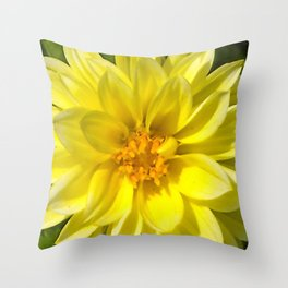 Floral Beauty #5 Throw Pillow