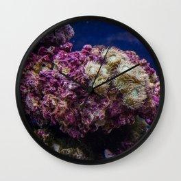Super Coral Wall Clock