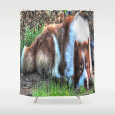 sleaping Shower Curtain