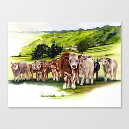 Herd It Throught the Grapevine Canvas Print