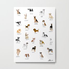 Dog breeds! Metal Print