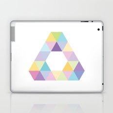Fig. 013 Laptop & iPad Skin