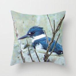 Young Belted Kingfisher (Repost) Throw Pillow