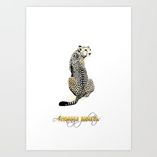 acinonyx jubatus Art Print