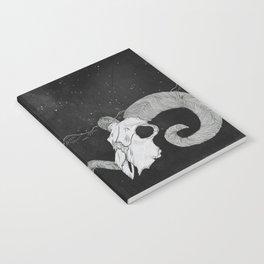 The Desert Notebook