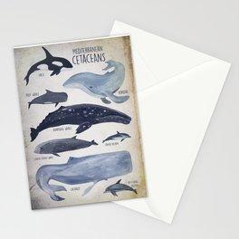 Mediterranean Cetaceans Stationery Cards