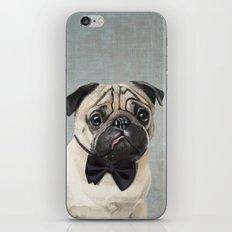 Mr Pug iPhone & iPod Skin