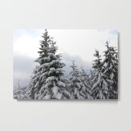 Winter Zauber 1 Metal Print