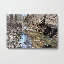 Alone in Secret Hollow with the Caves, Cascades, and Critters, No. 10 of 20 Metal Print