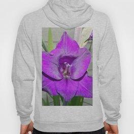 Purple Gladiola Hoody