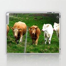 Cows on the field Laptop & iPad Skin