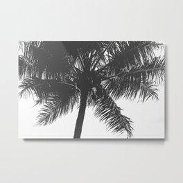 Palm Tree Grey Summer Beach Metal Print