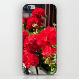 Bunches of vibrant red Pelargonium iPhone Skin