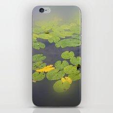 garden pond IV iPhone & iPod Skin
