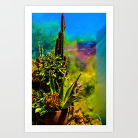 cacti Art Prints featuring Cacti   by Ashley Hirst Photography