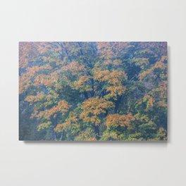 4 S6 Tapestry Of Bronze & Greens 12MB AutoAdj ASBU 81x54 150ppi RGB 60MB IMG_8006 Metal Print