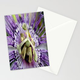 Purple Passion Flower Close Up Stationery Cards