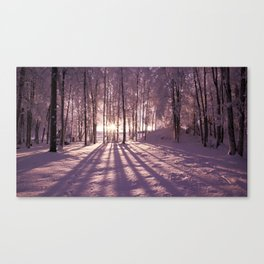 Wander always - winter season - Canvas Print