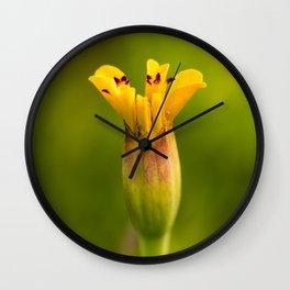 Jaguar Marigold Blooming Wall Clock
