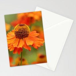 Flower 134 Stationery Cards