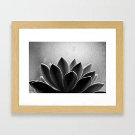 Zen Sprout Framed Art Print