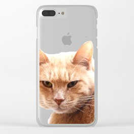 Red cat watching Clear iPhone Case