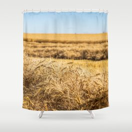 Blue & Gold Shower Curtain