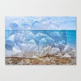 Sea shore sea. Shells Canvas Print