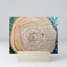 Log with annual rings on a slice. Mini Art Print