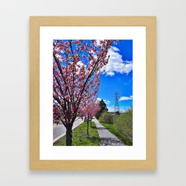Spring on Waterman Drive, Knightville, South Portland, Maine Framed Art Print