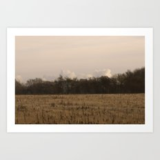 Old Fields Art Print