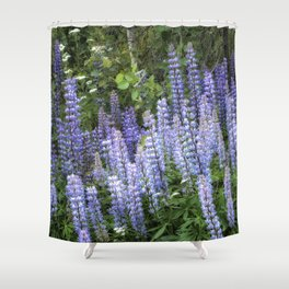 Lupins in Blue and Purple Shower Curtain