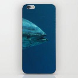 Bluefin iPhone Skin
