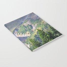 SWIFT CREEK HEADWATERS BELOW TABLE MOUNTAIN Notebook