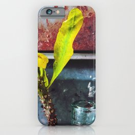 yellow euphorbia milii plant with old lusty metal background iPhone Case