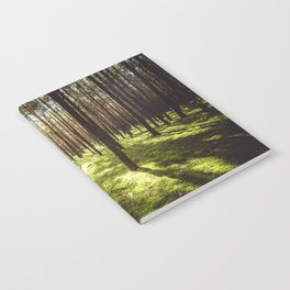 FOREST - Landscape and Nature Photography Notebook