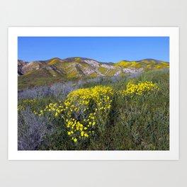 Carrizo Plain National Monument California Art Print