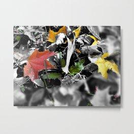 colors in contrast Metal Print