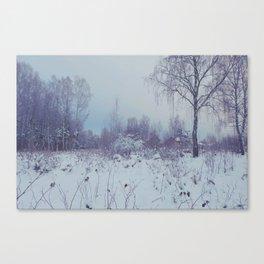 magic winterland Canvas Print