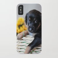 puppies iPhone & iPod Cases featuring Puppies by Photography By SidD