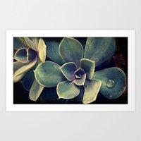 succulent Art Prints featuring Succulent by KunstFabrik_StaticMovement Manu Jobst