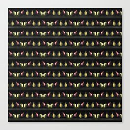 Holiday Fruit Stripes Photographic Pattern #1 Canvas Print