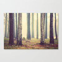woods Canvas Prints featuring Woods  by Slight Clutter