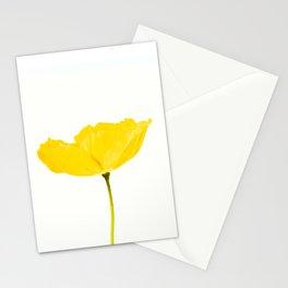 Yellow Poppy White Background #decor #society6 #buyart Stationery Cards