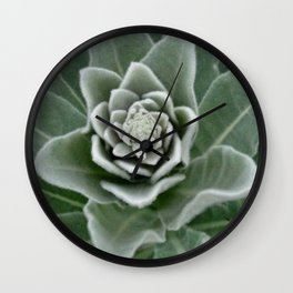 Golden Ratio in a Wild Weed Wall Clock