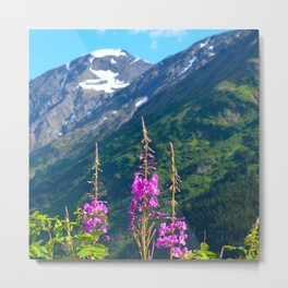 Fireweed ~ Mid-Summer Metal Print