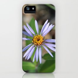 One Arctic Aster iPhone Case