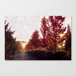Fall Sunrise in the Fog Canvas Print
