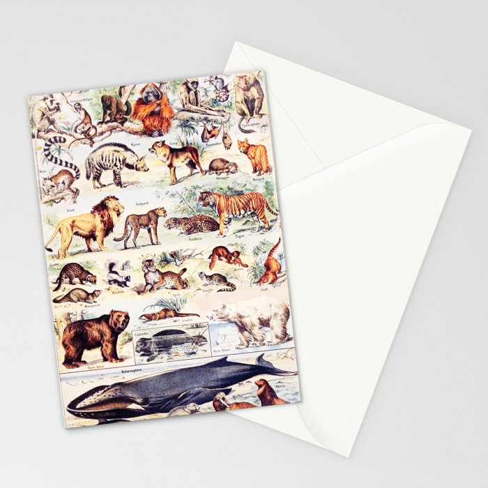 Vintage Antique Wildlife Encyclopedia Print Stationery Cards