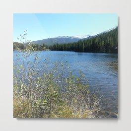 Bear Lake, Rock Mtn National Park Metal Print